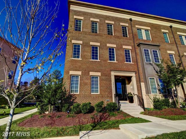 22810 Goldsborough Terrace, Ashburn, VA 20148 (#LO10084288) :: Network Realty Group