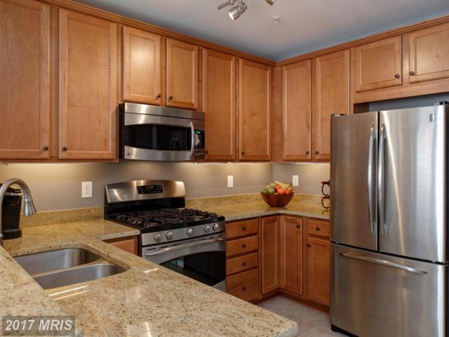42594 Cardinal Trace Terrace, Ashburn, VA 20148 (#LO10086601) :: Colgan Real Estate