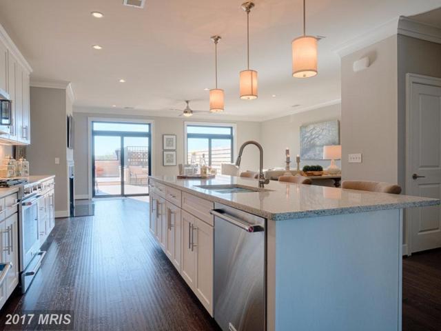 43545 Michigan Sq #S6, Leesburg, VA 20176 (#LO10087287) :: Wicker Homes Group