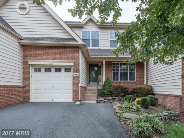 43264 Somerset Hills Terrace, Ashburn, VA 20147 (#LO10088966) :: The Greg Wells Team