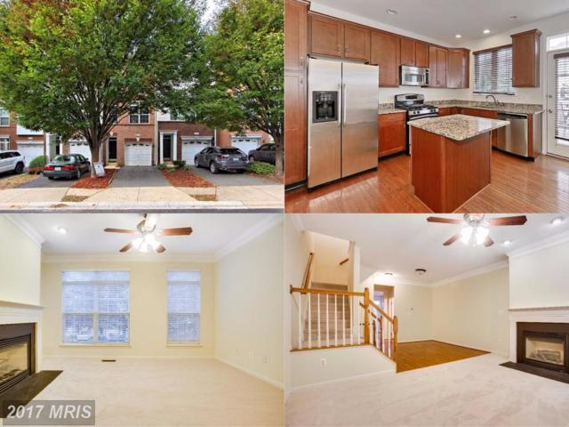 20467 Greymont Terrace, Ashburn, VA 20147 (#LO10091624) :: The Greg Wells Team