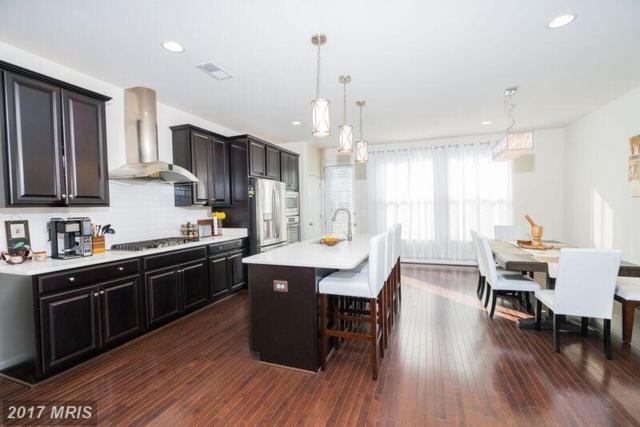 23399 Epperson Square, Ashburn, VA 20148 (#LO10095668) :: Wicker Homes Group