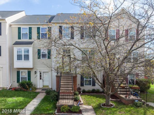 20784 Apollo Terrace, Ashburn, VA 20147 (#LO10101745) :: LoCoMusings
