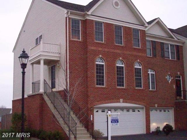 140 Misty Pond Terrace, Purcellville, VA 20132 (#LO10103452) :: LoCoMusings
