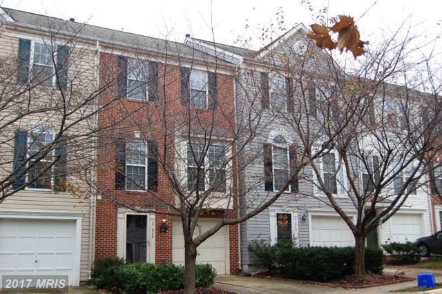 21946 Golden Spike Terrace, Sterling, VA 20166 (#LO10104260) :: The Putnam Group