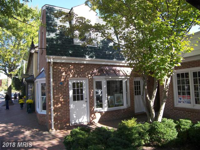 11151719 Washington Street E, Middleburg, VA 20117 (#LO10105567) :: LoCoMusings