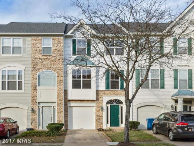 43530 Laidlow Street, Chantilly, VA 20152 (#LO10106725) :: Mosaic Realty Group