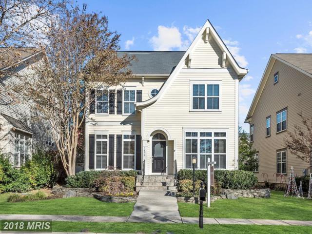 42576 Blue Copper Way, Ashburn, VA 20148 (#LO10112818) :: Pearson Smith Realty