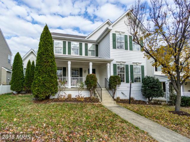 42904 Kirkland Street, Ashburn, VA 20147 (#LO10112985) :: Pearson Smith Realty