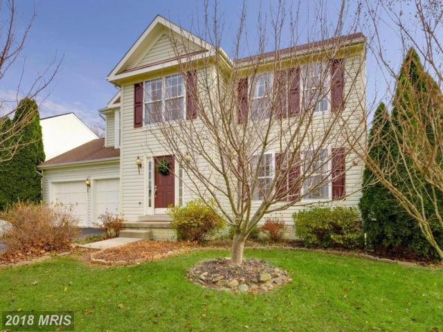 17354 Arrowood Place, Round Hill, VA 20141 (#LO10118311) :: Pearson Smith Realty