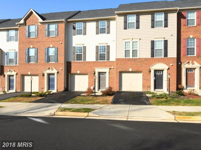 22849 Chestnut Oak Terrace, Sterling, VA 20166 (#LO10119260) :: Pearson Smith Realty