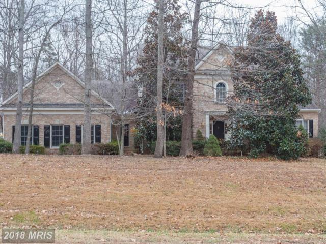 40758 Forest Glen Drive, Leesburg, VA 20175 (#LO10121252) :: Wilson Realty Group