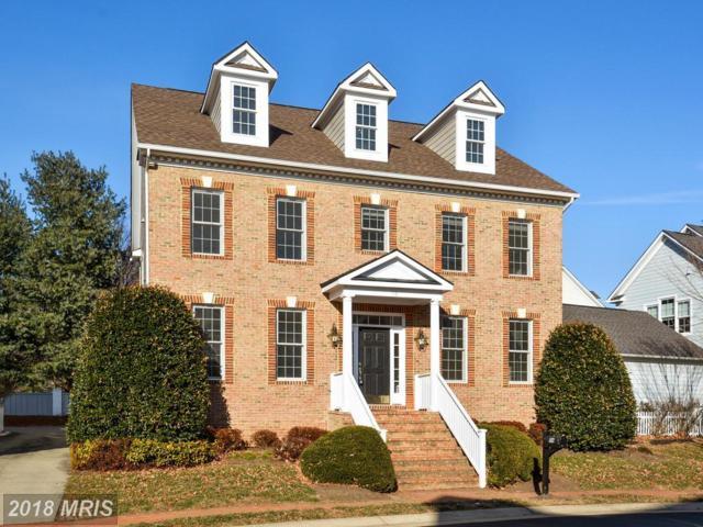 116 Desales Drive, Purcellville, VA 20132 (#LO10122427) :: Pearson Smith Realty