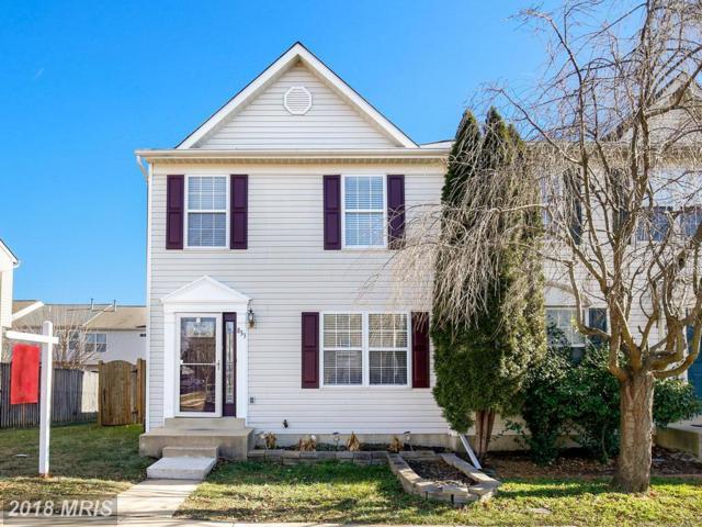 833 Vanderbilt Terrace SE, Leesburg, VA 20175 (#LO10123321) :: Pearson Smith Realty