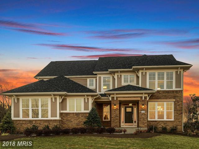 Grayhaven Place, Aldie, VA 20105 (#LO10125253) :: The Gus Anthony Team