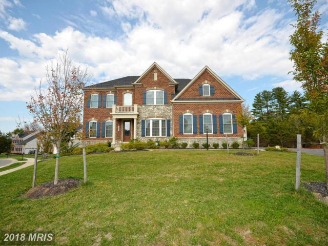 26605 Marbury Estates Drive, Chantilly, VA 20152 (#LO10126137) :: The Gus Anthony Team