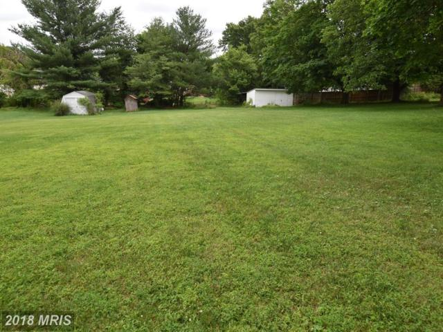 Youngs Cliff Road, Sterling, VA 20165 (#LO10127463) :: The Gus Anthony Team
