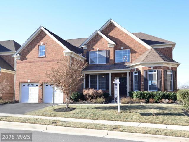 43373 Barnstead Drive, Ashburn, VA 20148 (#LO10128861) :: Pearson Smith Realty
