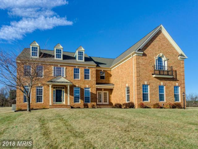 38766 Boca Court, Waterford, VA 20197 (#LO10129301) :: LoCoMusings