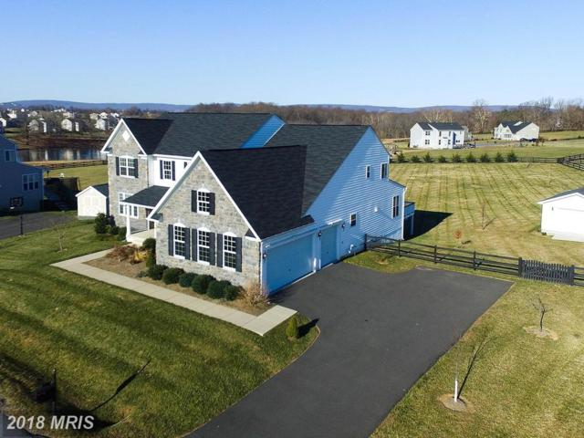 36766 Waterfront Lane, Purcellville, VA 20132 (#LO10129429) :: Pearson Smith Realty