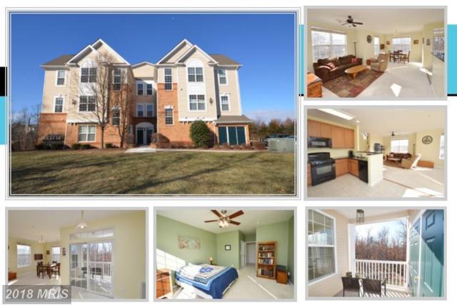 43415 Madison Renee Terrace #106, Ashburn, VA 20147 (#LO10130807) :: Pearson Smith Realty