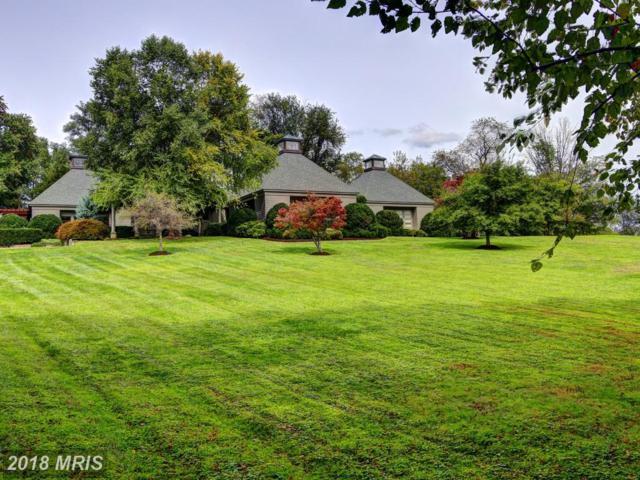 37176 Mountville Road, Middleburg, VA 20117 (#LO10138591) :: LoCoMusings
