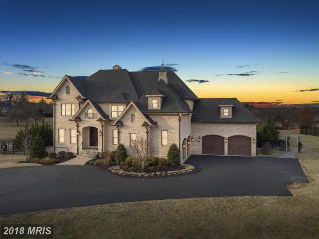 41066 Grenata Preserve Place, Leesburg, VA 20175 (#LO10147130) :: Keller Williams Pat Hiban Real Estate Group