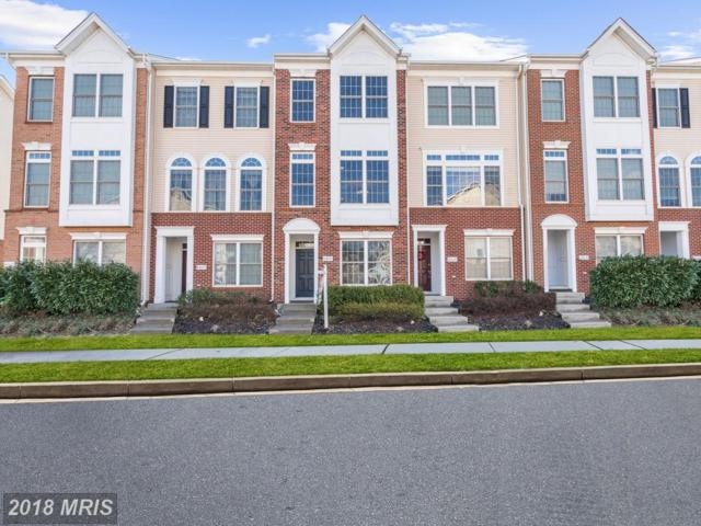 42635 Homefront Terrace, Chantilly, VA 20152 (#LO10154556) :: The Greg Wells Team