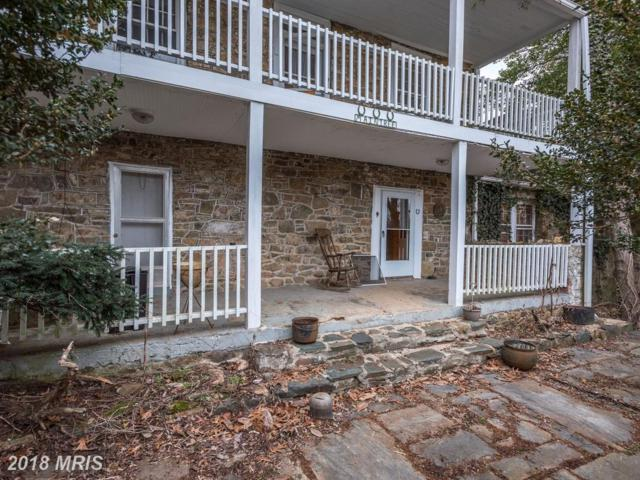 40252 Thomas Mill Road, Leesburg, VA 20175 (#LO10158291) :: The Dwell Well Group