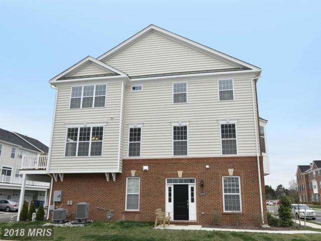 43009 Atoka Manor Terrace, Ashburn, VA 20148 (#LO10160991) :: Labrador Real Estate Team