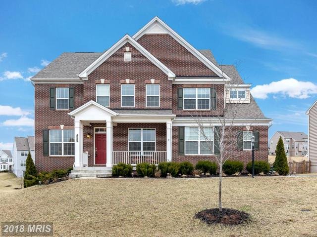 13563 Eagles Rest Drive, Leesburg, VA 20176 (#LO10161637) :: Pearson Smith Realty