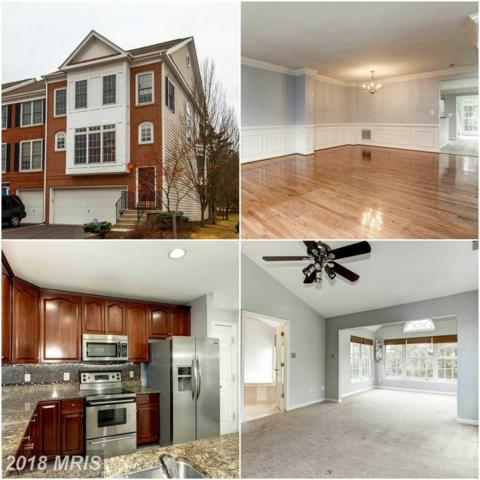 25231 Dunvegan Square, Chantilly, VA 20152 (#LO10163375) :: The Greg Wells Team