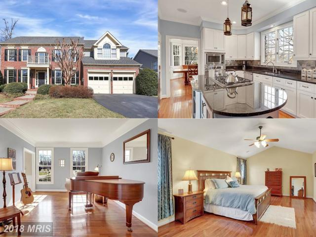 47572 Griffith Place, Sterling, VA 20165 (#LO10163586) :: Great Falls Great Homes