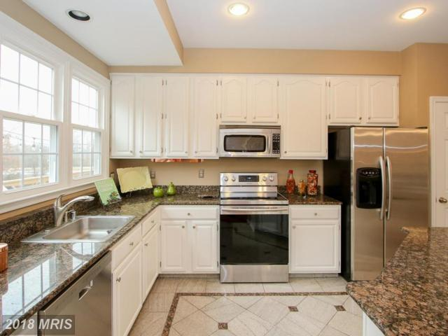 20329 Brentmeade Terrace, Potomac Falls, VA 20165 (#LO10169513) :: SURE Sales Group