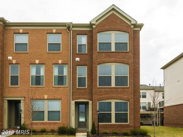 23482 Ashwood Moss Terrace, Ashburn, VA 20148 (#LO10180500) :: Pearson Smith Realty