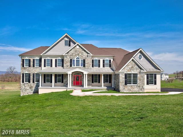 40824 Cliford Court, Waterford, VA 20197 (#LO10185264) :: LoCoMusings