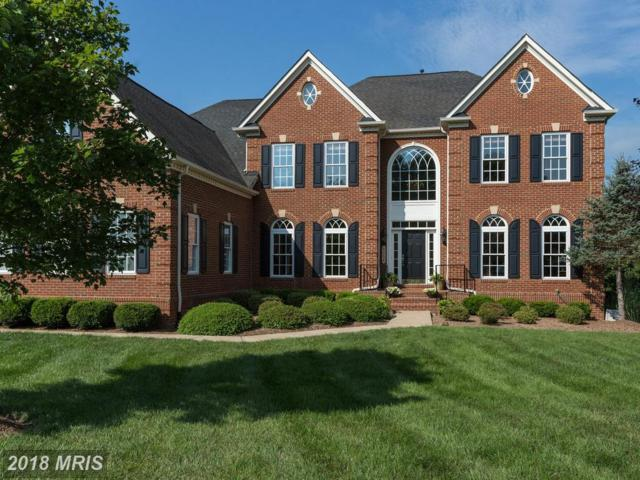 42294 Iron Bit Place, Chantilly, VA 20152 (#LO10194209) :: Labrador Real Estate Team