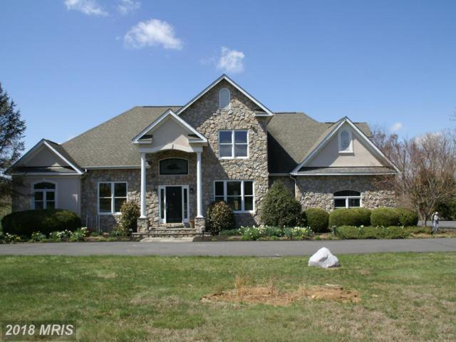 37038 Cardigan Place, Purcellville, VA 20132 (#LO10194906) :: LoCoMusings