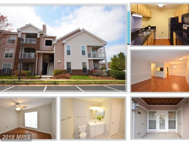 21013 Timber Ridge Terrace #101, Ashburn, VA 20147 (#LO10206312) :: The Greg Wells Team