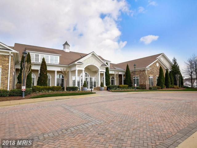 20590 Hope Spring Terrace #205, Ashburn, VA 20147 (#LO10207968) :: Dart Homes