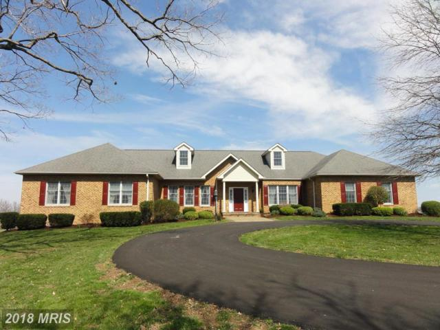 17114 Ivandale Road, Hamilton, VA 20158 (#LO10209669) :: Labrador Real Estate Team