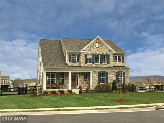13487 Eagles Rest Drive, Leesburg, VA 20176 (#LO10214293) :: LoCoMusings