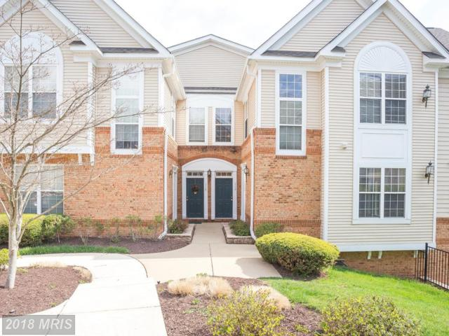 43865 Hickory Corner Terrace #113, Ashburn, VA 20147 (#LO10215174) :: The Greg Wells Team