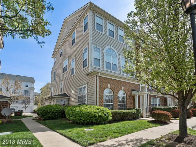 42245 Terrazzo Terrace, Aldie, VA 20105 (#LO10216818) :: LoCoMusings