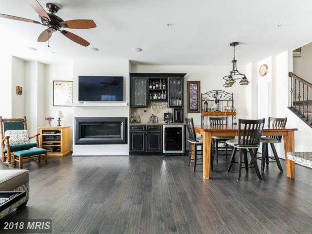 463 Kornblau Terrace SE ., Leesburg, VA 20175 (#LO10225639) :: The Greg Wells Team