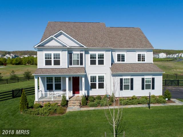 42077 Trengwinton Place, Leesburg, VA 20176 (#LO10236517) :: Eric Stewart Group