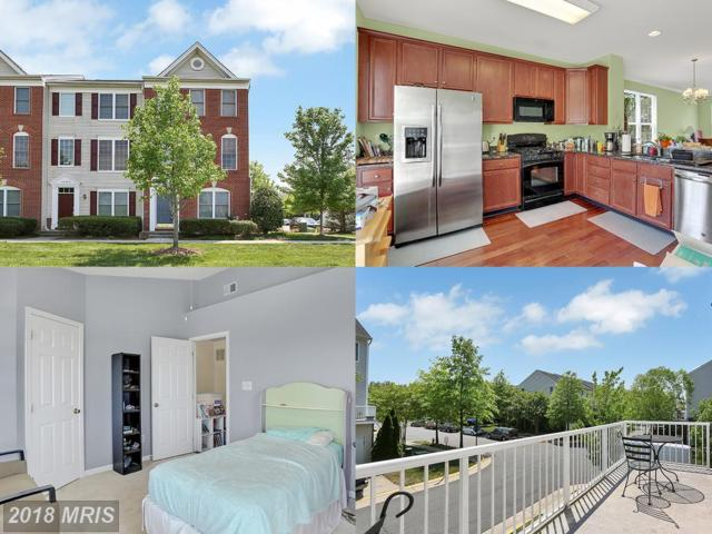 42780 Longworth Terrace, Chantilly, VA 20152 (#LO10245687) :: Circadian Realty Group