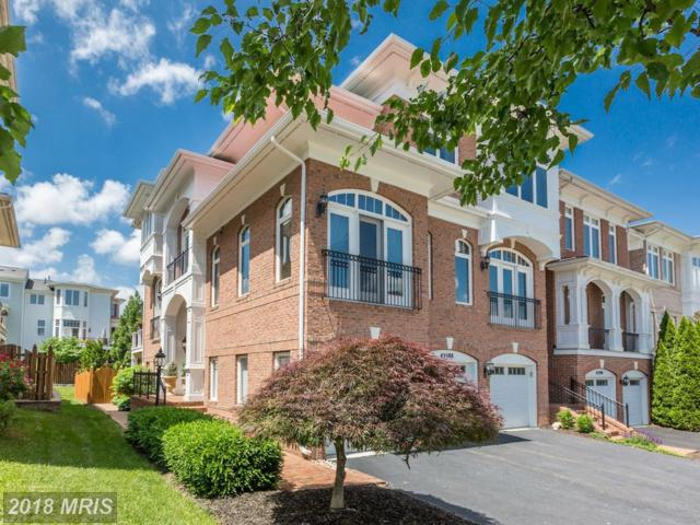 43588 Purple Aster Terrace, Leesburg, VA 20176 (#LO10250909) :: Jim Bass Group of Real Estate Teams, LLC
