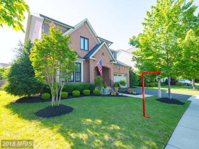 23305 Morning Walk Drive, Ashburn, VA 20148 (#LO10250927) :: Advance Realty Bel Air, Inc