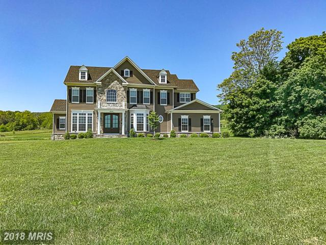 35543 Greyfriar Drive, Round Hill, VA 20141 (#LO10252353) :: The Gus Anthony Team
